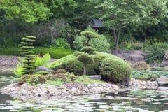 Jardin japonais, usines exotiques, ressort, Wroclaw, Pologne Images libres de droits