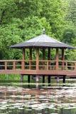 Jardin japonais, usines exotiques, ressort, Wroclaw, Pologne images stock