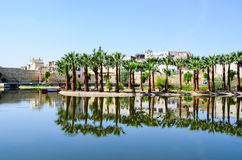 Jardin Jnan Sbil, Royal Park in Fes with its lake and towering palms, Fez, Morocco. The lake of Jnan Sbil Park and the reflection of palm trees and old houses of Stock Photos