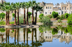 Jardin Jnan Sbil, Royal Park in Fes with its lake and towering palms, Fez, Morocco. The lake of Jnan Sbil Park and the reflection of palm trees and old houses of Royalty Free Stock Image