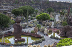 Jardin Lanzarote de cactus Photographie stock