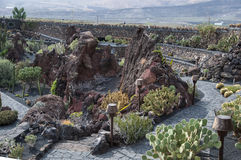 Jardin Lanzarote de cactus Photo libre de droits