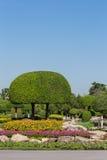 Jardin le jour ensoleillé photo libre de droits