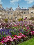 jardin luxembourg paris för du france Fotografering för Bildbyråer