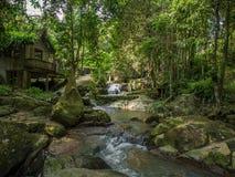 Jardin magique de Tanim Bouddha, île de Koh Samui image libre de droits