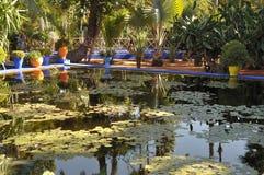 jardin majorelle Μαρακές στοκ εικόνα με δικαίωμα ελεύθερης χρήσης