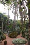 Jardin Majorelle Imagen de archivo libre de regalías
