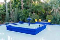 Jardin Majorelle av Yves Saint Laurent Fotografering för Bildbyråer