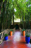 Jardin Majorelle Garden in Marrakesh, Morocco Royalty Free Stock Photography
