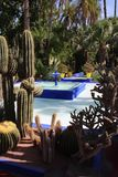 Jardin Majorelle, Marrakech Stock Photography