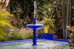 Jardin Majorelle in Marrakech Stock Afbeeldingen