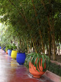 Jardin Majorelle Stock Photography