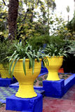 Jardin Majorelle Royalty Free Stock Photography