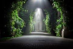 Jardin mystérieux Photos libres de droits