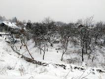 Jardin négligé couvert de neige image libre de droits