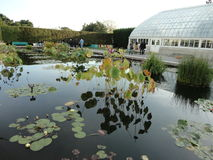Jardin @ NYBG 210 de Monets Image stock