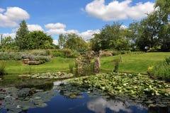 Jardin paisible avec l'étang de lis Images libres de droits