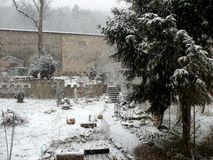 Jardin pendant l'hiver photographie stock