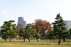 Jardin près de palais impérial, Tokyo Image stock
