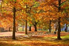 Jardin public de Boston Images stock