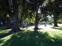 Jardin public de Boston, Boston, le Massachusetts, Etats-Unis Photographie stock libre de droits