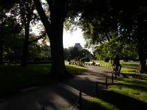 Jardin public de Boston, Boston, le Massachusetts, Etats-Unis Photo libre de droits