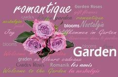 Bouquet antique de fleur Image libre de droits