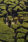 Jardin royal de Cascata images libres de droits