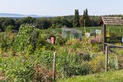 jardin rural de cottage dans le jour d'été chaud du garte de juillet et de lettres Photo libre de droits