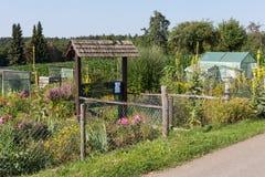 jardin rural de cottage dans le jour d'été chaud du garte de juillet et de lettres Photographie stock