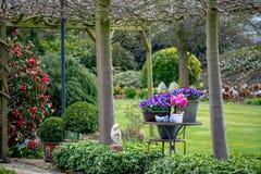 Jardin rural de ressort de style campagnard avec les fleurs colorées, cutted images stock
