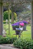 Jardin rural de ressort de style campagnard avec les fleurs colorées, cutted photographie stock