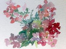 Jardin sauvage de fleur colorée de fond d'art d'aquarelle Photo libre de droits