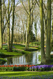 Jardin scénique dans Lisse (Hollandes) Images stock