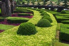 Jardin soigné photographie stock