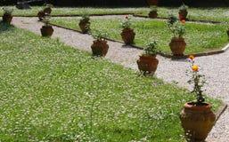 Jardin soigné gentil avec des pots de poterie de terre et de belles roses image stock