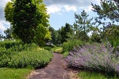 Jardin supérieur d'entraînement de Cornell Botanical Gardens photos libres de droits