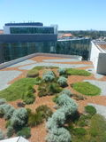 Jardin supérieur de toit chez Fiona Stanely Hospital Perth Image stock