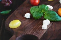 Jardin tomates fraîches de Basil et d'héritage avec du fromage de mozzarella pour la salade de Caprese photographie stock