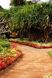 Jardin tropical Image libre de droits