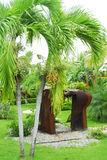 Jardin tropical Images libres de droits