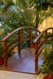 Jardin tropical avec des palmiers photo stock