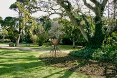 Jardin tropical avec les arbres énormes pour l'ombre et la relaxation photos stock