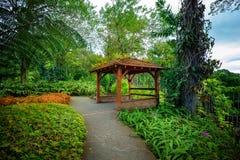 Jardin tropical de balata Le balata est un jardin botanique image stock