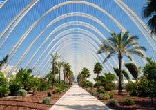 Jardin tropical de fantaisie Photographie stock libre de droits
