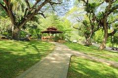 Jardin tropical de stationnement photographie stock