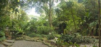 Jardin tropical, Malaisie Photographie stock