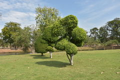 Jardin vert à Ayutthaya, en Thaïlande, Photos libres de droits