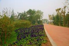 Jardin vert d'expo à Zhengzhou Images libres de droits