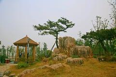 Jardin vert d'expo à Zhengzhou Photos stock